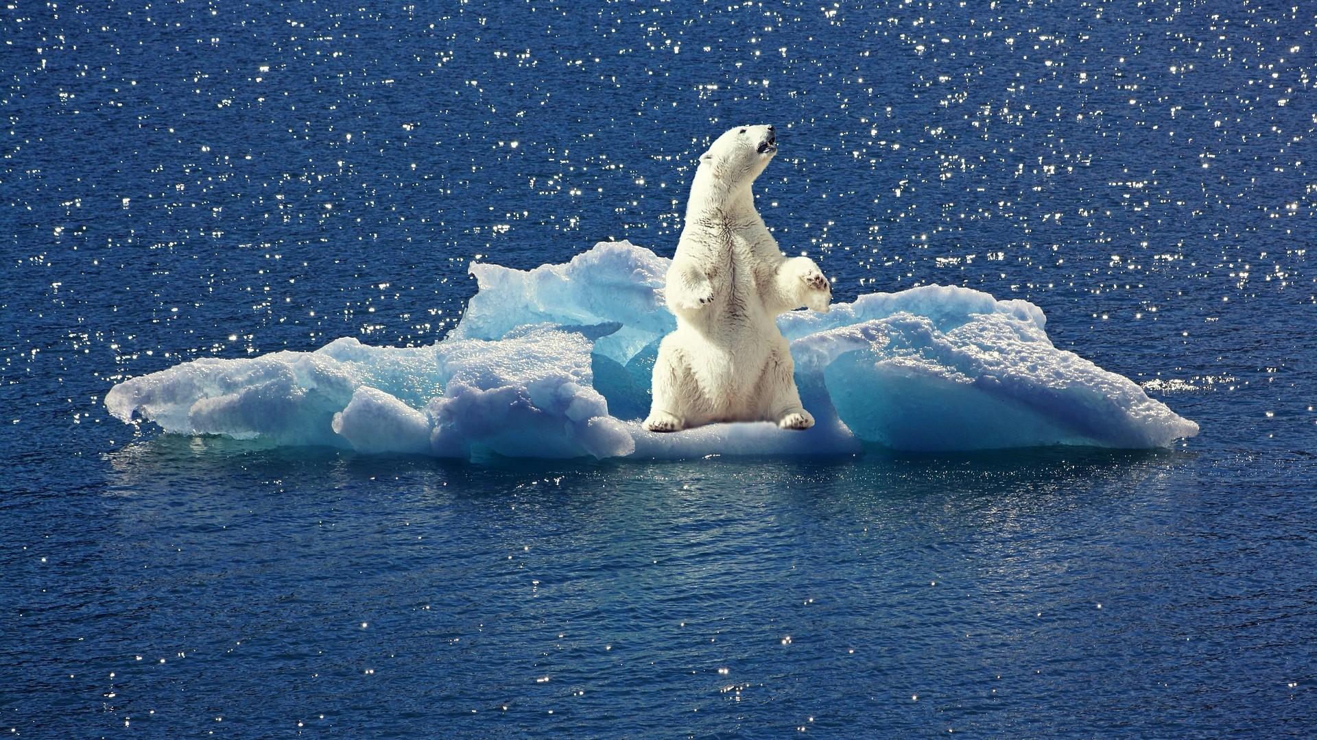 I cambiamenti climatici comportano rischi sempre più gravi per gli ecosistemi, la salute umana e l'economia in Europa